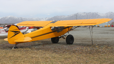 N3746Z - Piper PA-18 Super Cub - Private
