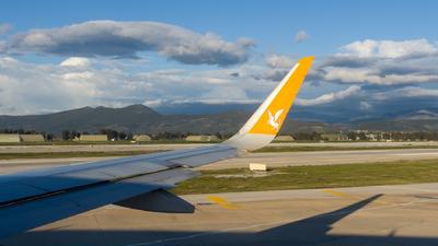 TC-DCE - Airbus A320-216 - Pegasus Airlines