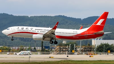 A picture of B1720 - Boeing 73786D - Shanghai Airlines - © ChengFJ