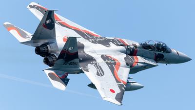 92-8095 - McDonnell Douglas F-15DJ Eagle - Japan - Air Self Defence Force (JASDF)