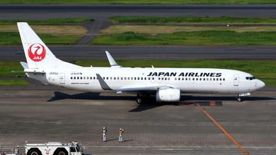 JA313J - Boeing 737-846 - Japan Airlines (JAL)