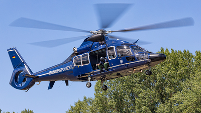 D-HLTP - Eurocopter EC 155 B1 - Germany - Bundespolizei