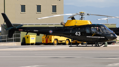 ZJ243 - Aérospatiale Squirrel HT.2 - United Kingdom - Defence Helicopter Flying School