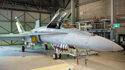 A21-39 - McDonnell Douglas F/A-18A Hornet - Australia - Royal Australian Air Force (RAAF)