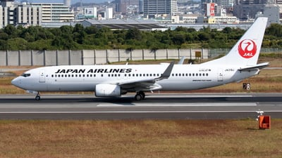 A picture of JA319J - Boeing 737846 - Japan Airlines - © Tokubee