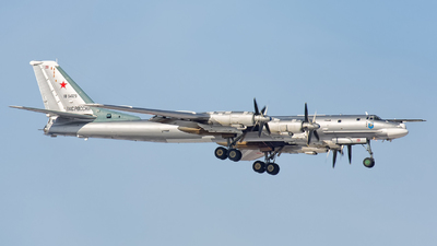 RF-94129 - Tupolev Tu-95MS Bear-H - Russia - Air Force