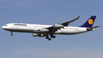 A picture of DAIGZ - Airbus A340313 - Lufthansa - © Domi Einert