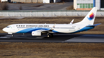 B-1771 - Boeing 737-8Q8 - Donghai Airlines