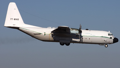 7T-WHO - Lockheed C-130H-30 Hercules - Algeria - Air Force