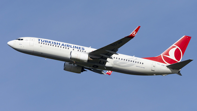 A picture of TCJHP - Boeing 7378F2 - Turkish Airlines - © Daniel Veronesi - RomeAviationSpotters