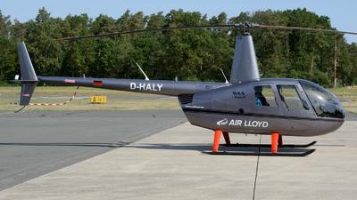 D-HALY - Robinson R44 Raven II - Air Lloyd