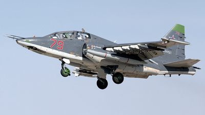 RF-91981 - Sukhoi Su-25UB Frogfoot - Russia - Air Force