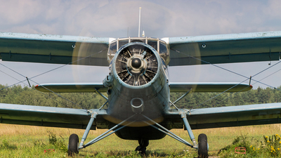 RF-00224 - PZL-Mielec An-2T - Russia - Defence Sports-Technical Organisation (ROSTO)