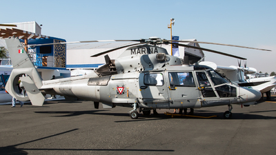 ANX-2155 - Eurocopter AS 565MB Panther - Mexico - Navy