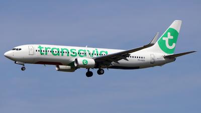 PH-HXO - Boeing 737-8K2 - Transavia Airlines