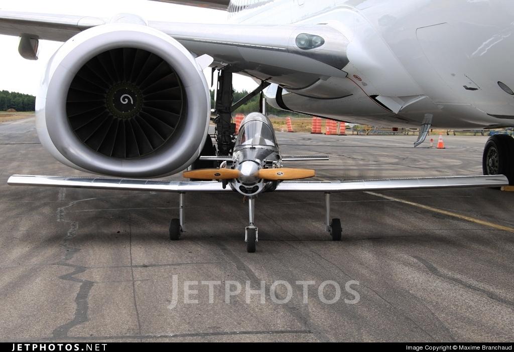 C-IGQA - Hummel Bird - Private