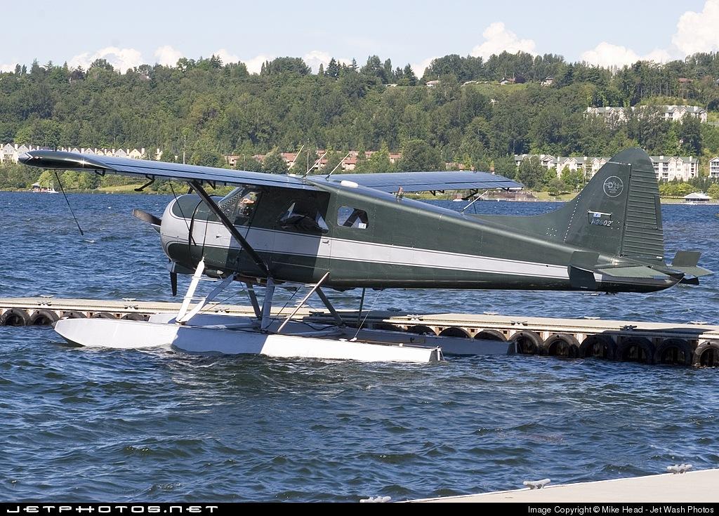 N2502 - De Havilland Canada L-20A Beaver - Dylan Bay Charter