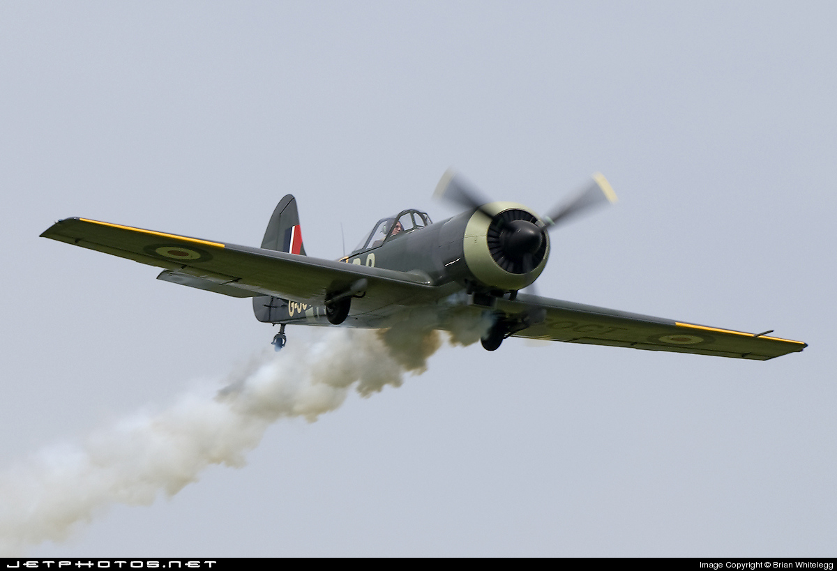 G-SOCT - Yakovlev Yak-50 - Private