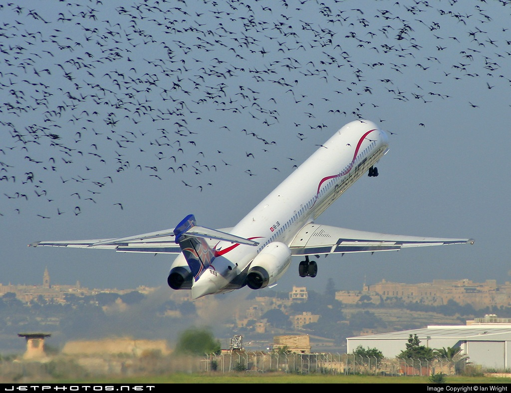 HB-JIB - McDonnell Douglas MD-90-30 - British Jet (Hello)