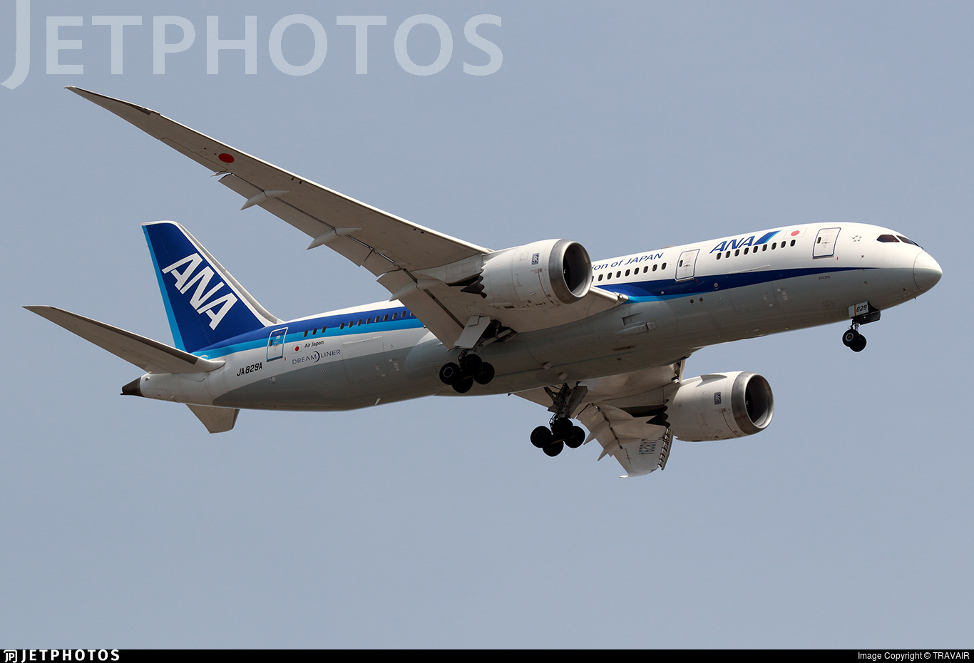 JA829A - Boeing 787-8 Dreamliner - All Nippon Airways (Air Japan)