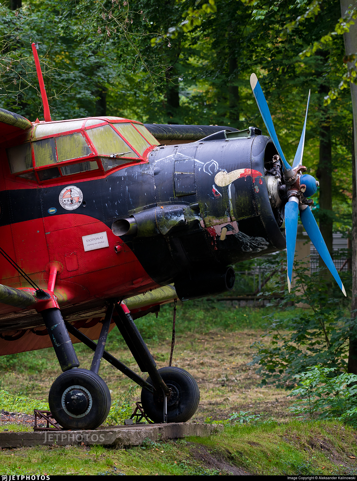 SP-ANT - PZL-Mielec An-2 - Private