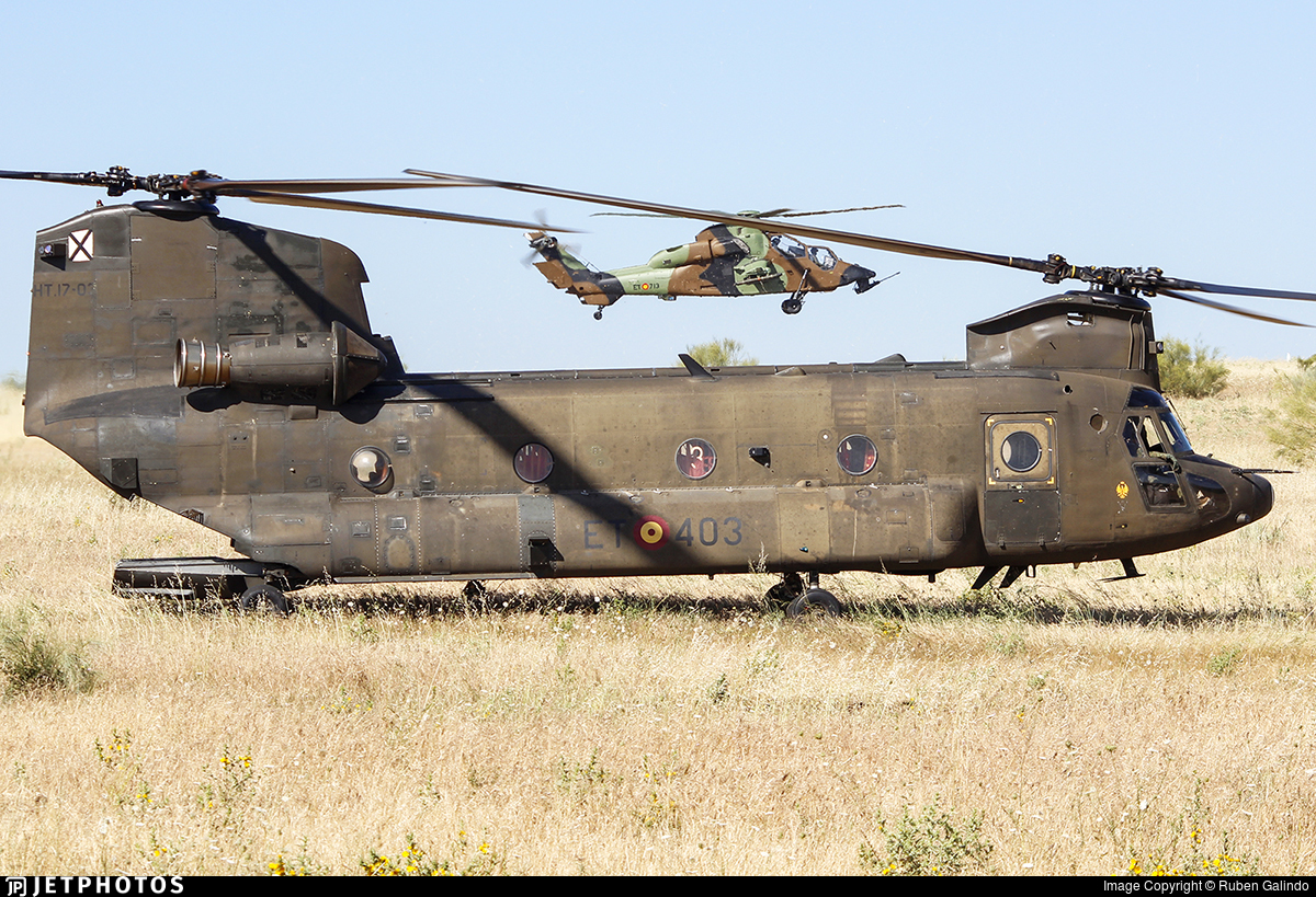 HT.17-03 - Boeing CH-47D Chinook - Spain - Army