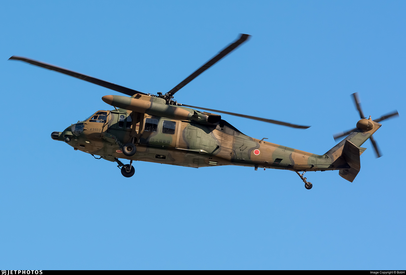 43102 - Mitsubishi UH-60J - Japan - Ground Self Defence Force (JGSDF)