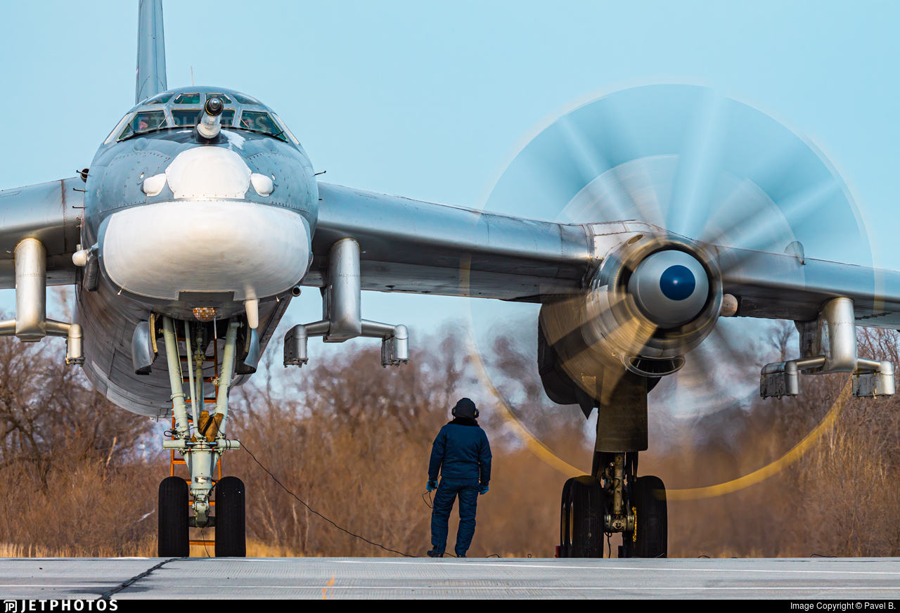 RF-94178 - Tupolev Tu-95 Bear - Russia - Air Force