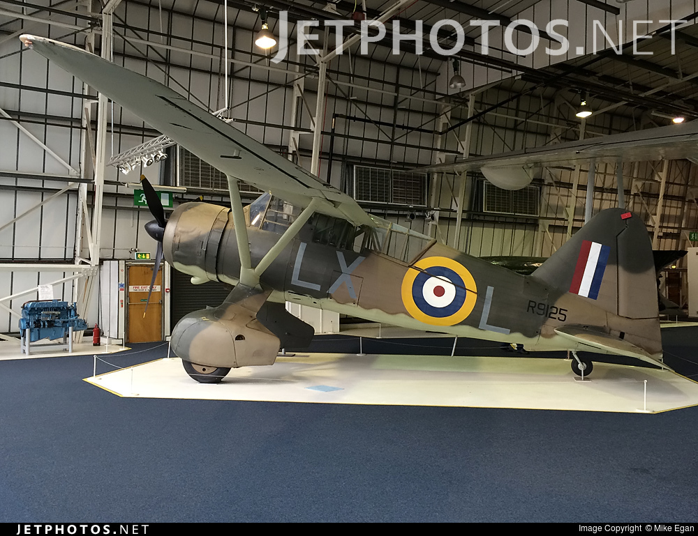 R9125 - Westland Lysander Mk.IIIA - United Kingdom - Royal Air Force (RAF)