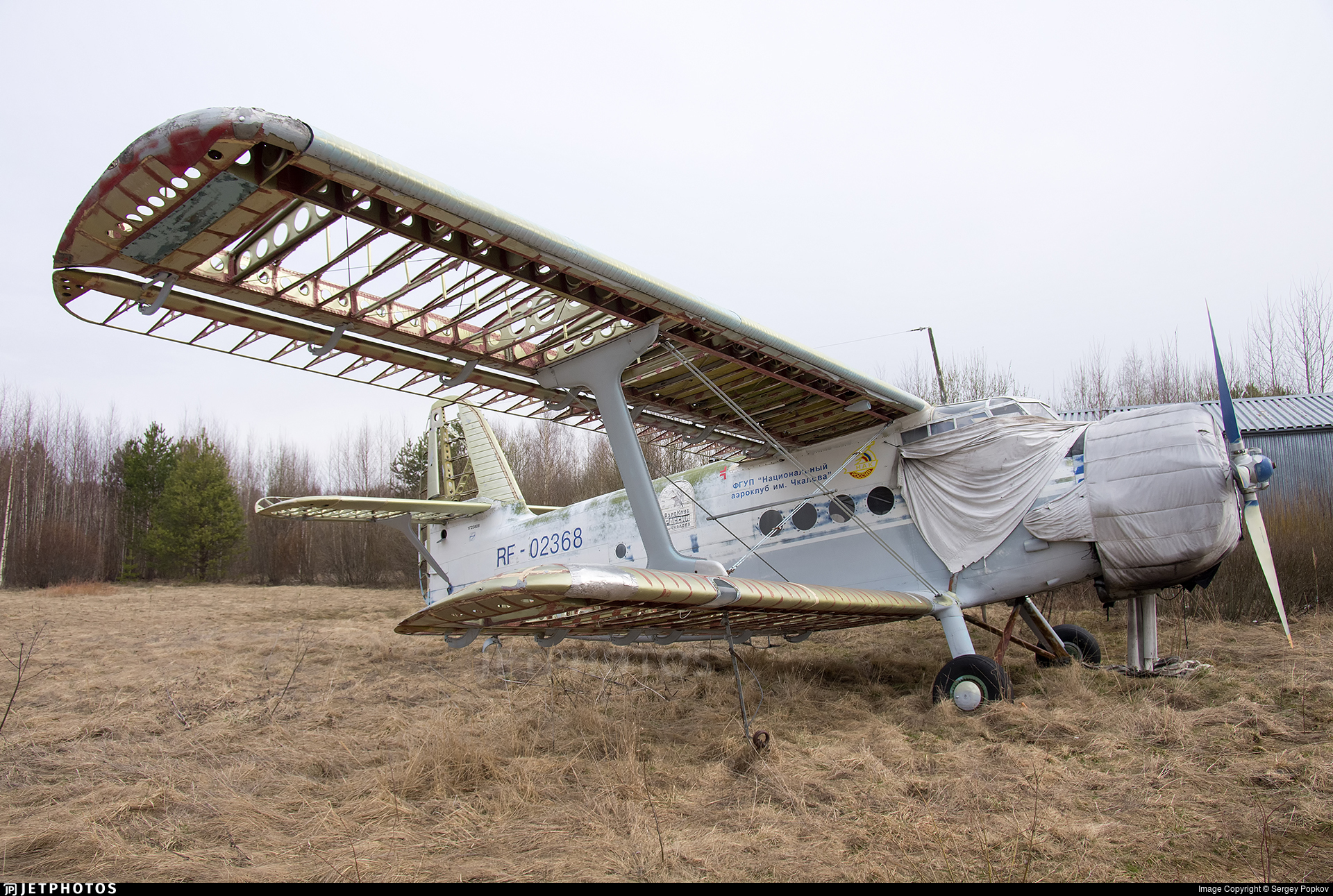 RF-02368 - PZL-Mielec An-2R - Russia - Defence Sports-Technical Organisation (ROSTO)