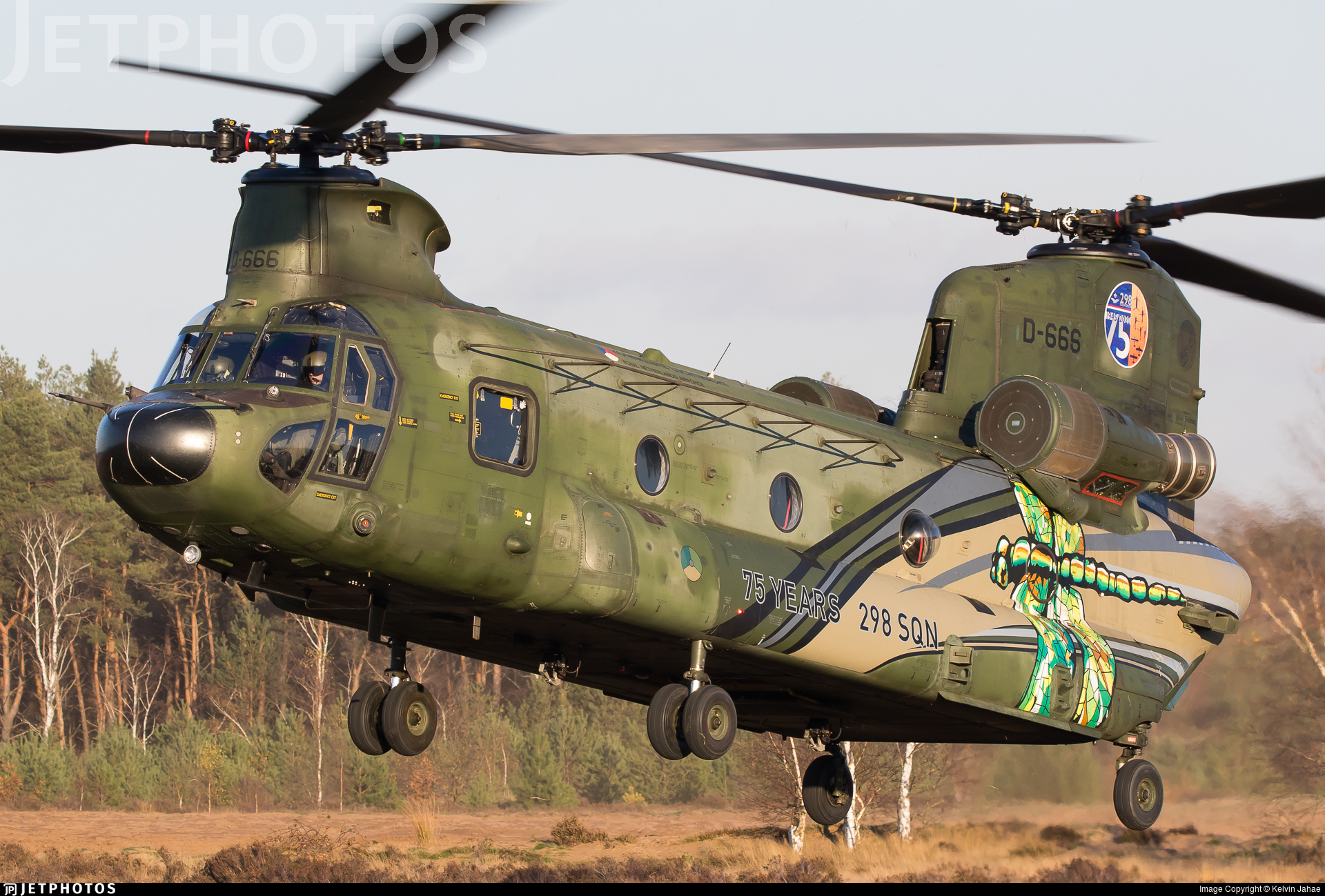 D-666 - Boeing CH-47D Chinook - Netherlands - Royal Air Force