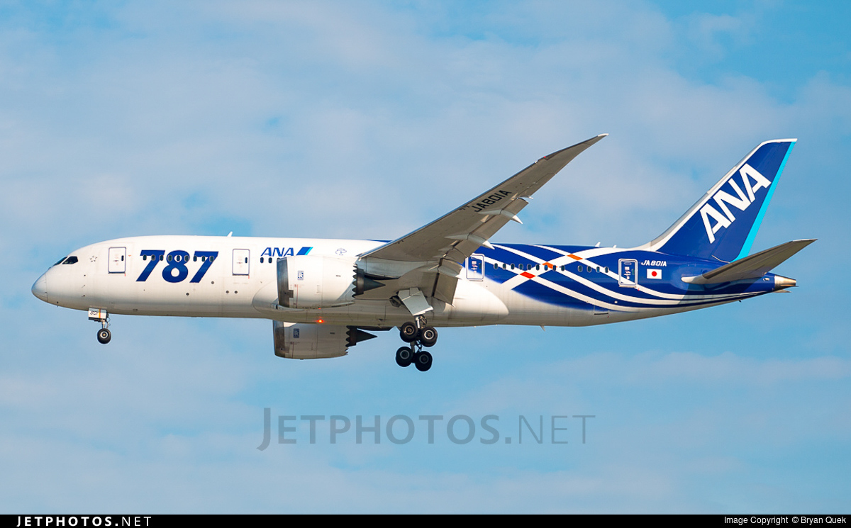 JA801A - Boeing 787-8 Dreamliner - All Nippon Airways (ANA)