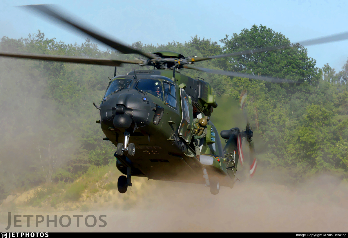 78-31 - NH Industries NH-90TTH - Germany - Army