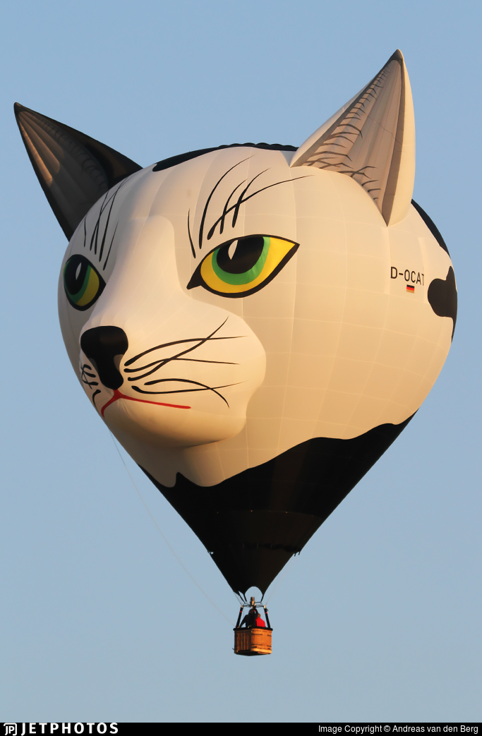 D-OCAT - Schroeder Fire Balloons Cat - Private