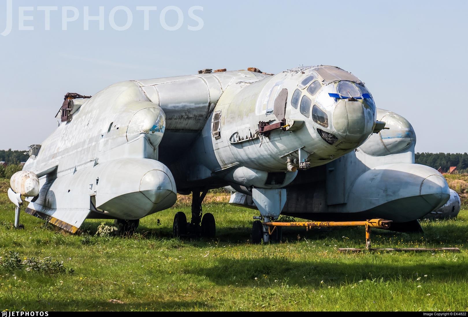CCCP-19172 - Beriev Bartini VVA-14 - Soviet Union - Air Force