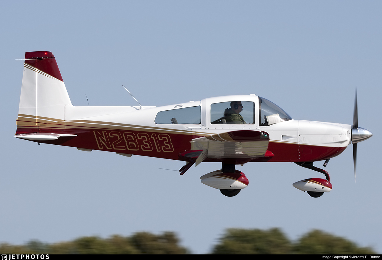 N28313 - Grumman American AA-5B Tiger - Private