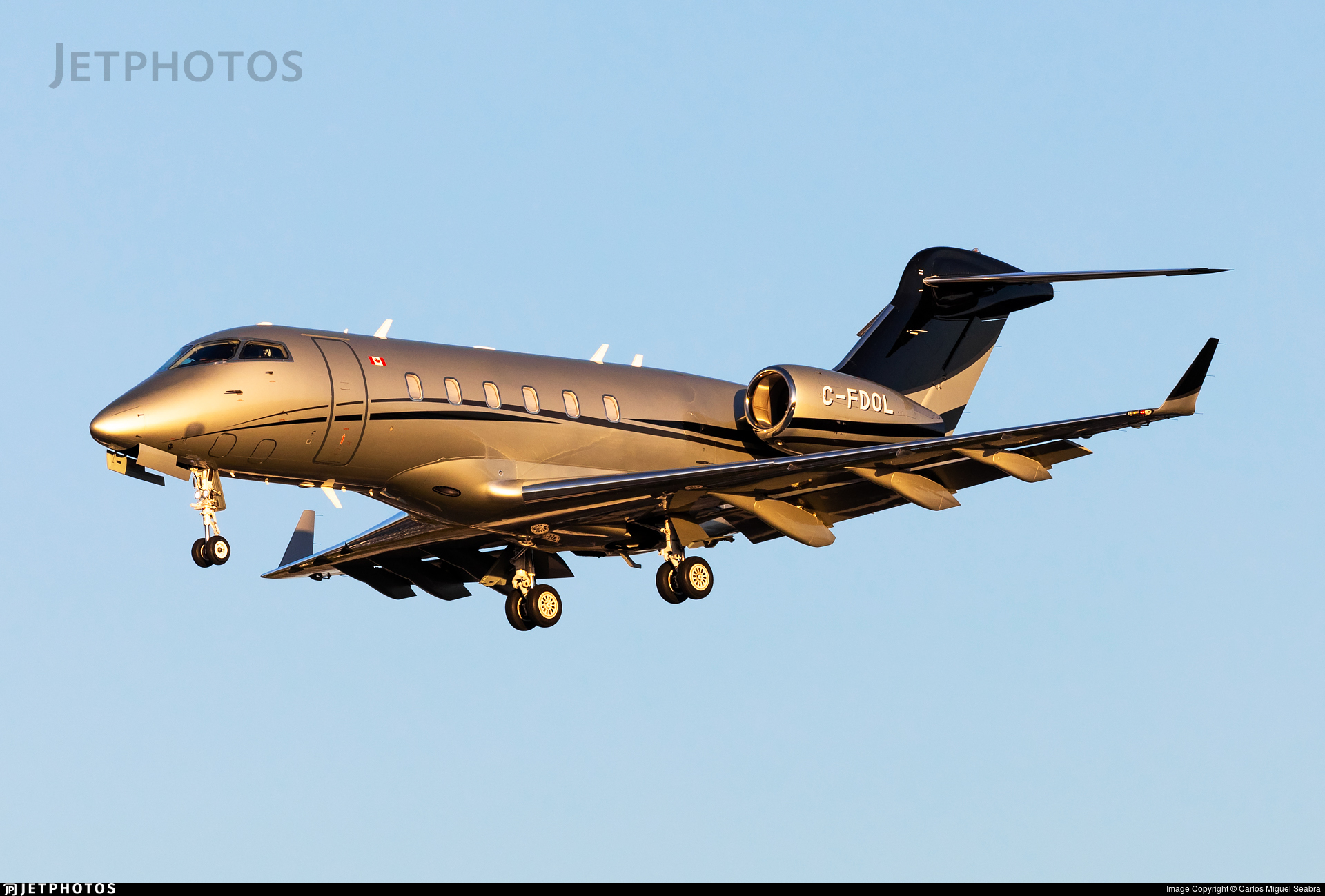 C-FDOL - Bombardier BD-100-1A10 Challenger 300 - Skyservice Business Aviation