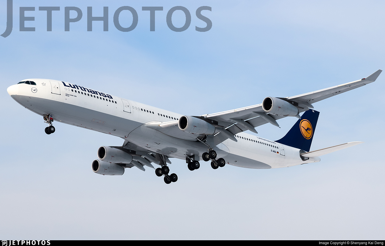 D-AIGL - Airbus A340-313X - Lufthansa