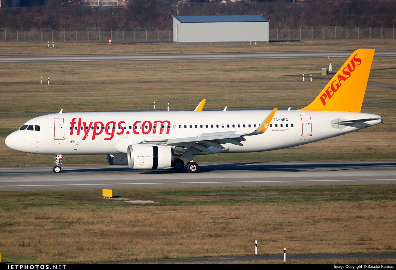 pegasus airlines essay