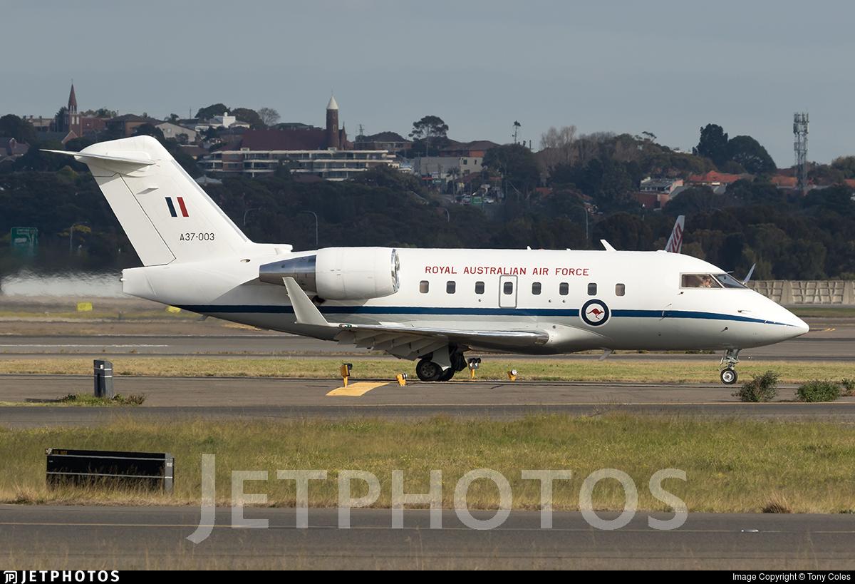 A37-003 - Bombardier CL-600-2B16 Challenger 604 - Australia - Royal Australian Air Force (RAAF)