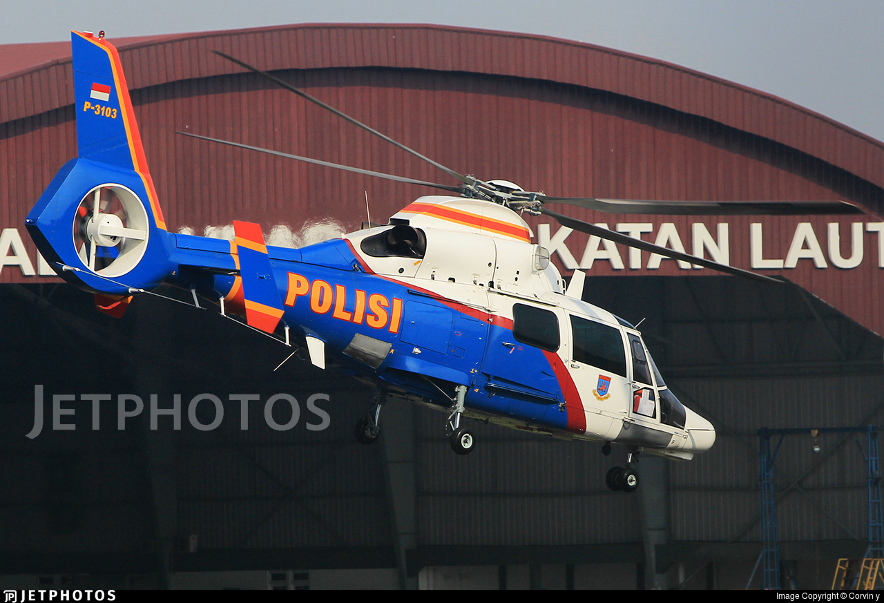 P-3103 - Eurocopter AS 365N3 Dauphin - Indonesia - Police