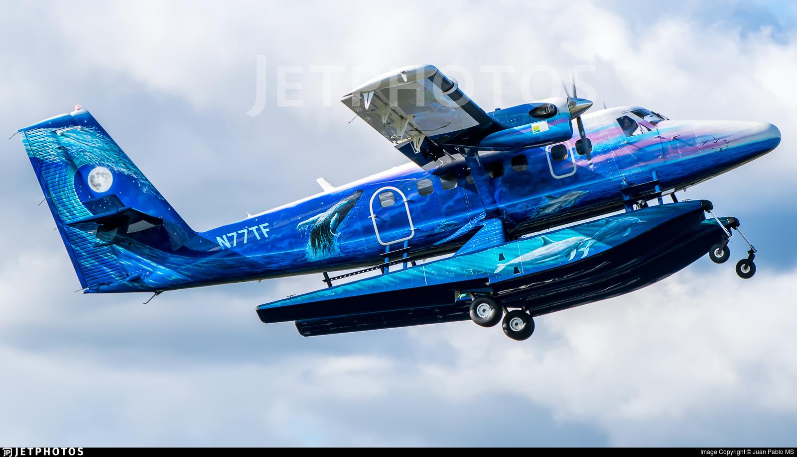 N77TF | Viking DHC-6-4...