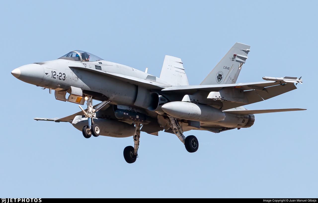 C.15-65 - McDonnell Douglas EF-18M Hornet - Spain - Air Force