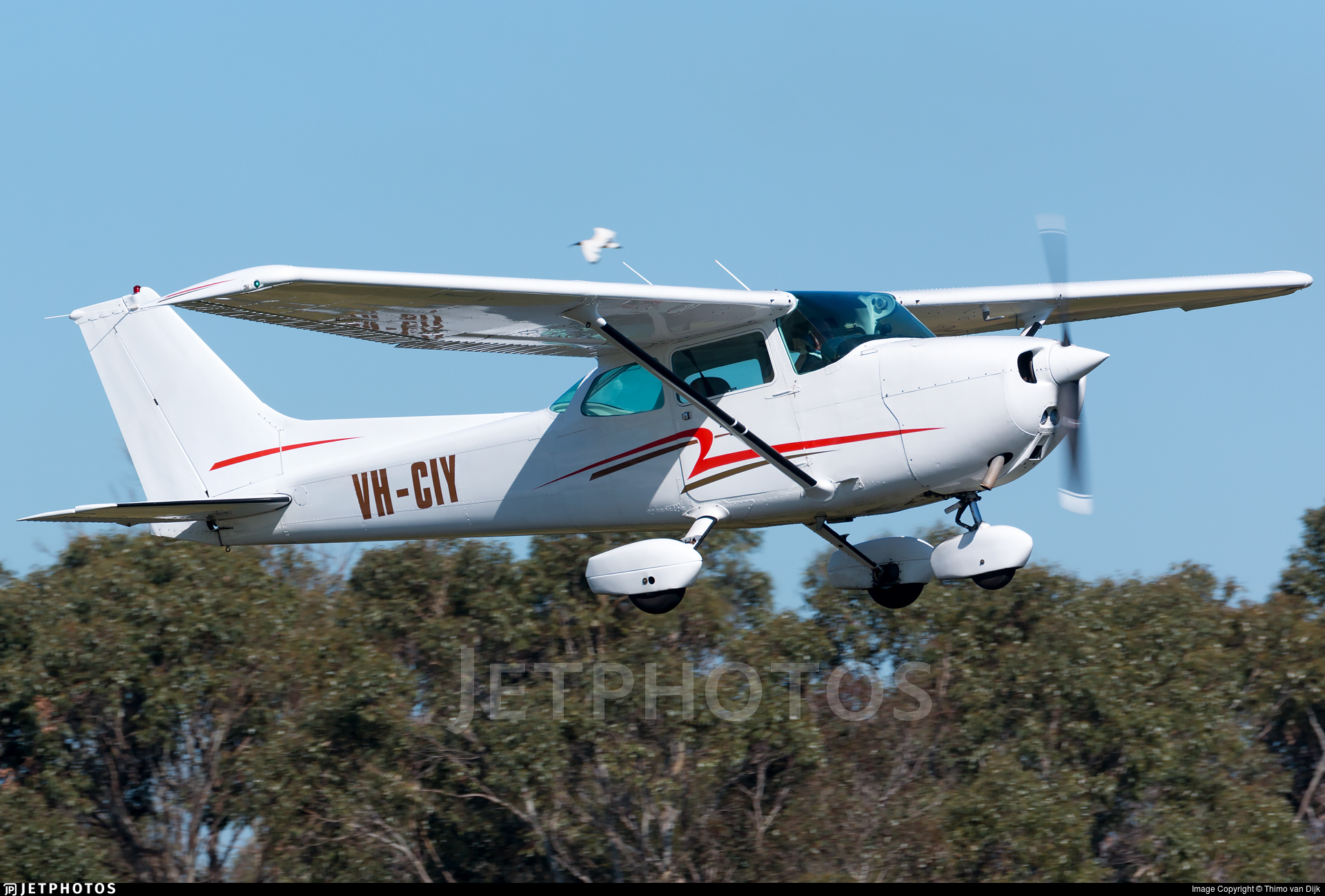 VH-CIY - Cessna 172P Skyhawk II - Private